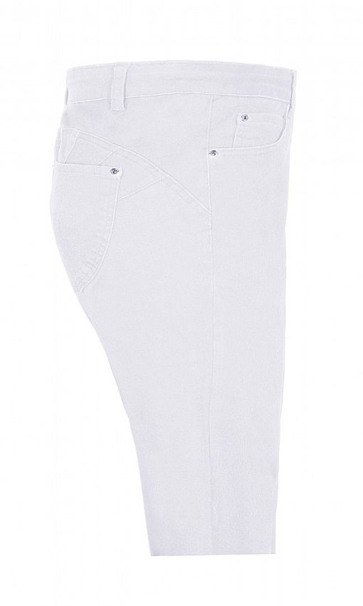 witte curve fit